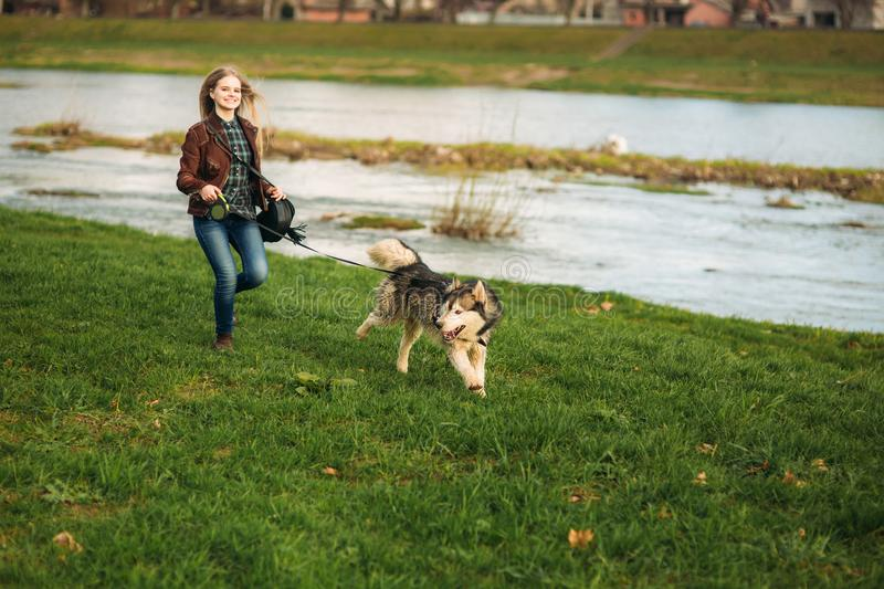 A girl is walking with a dog along the embankment. Beautiful Husky dog. The river. Spring royalty free stock images