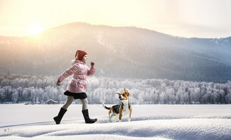 Girl walking with a dog in winter royalty free stock photo