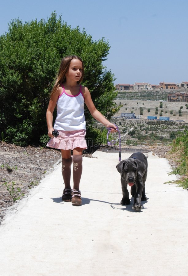 Download Girl walking her dog stock photo. Image of large, leash - 2568160