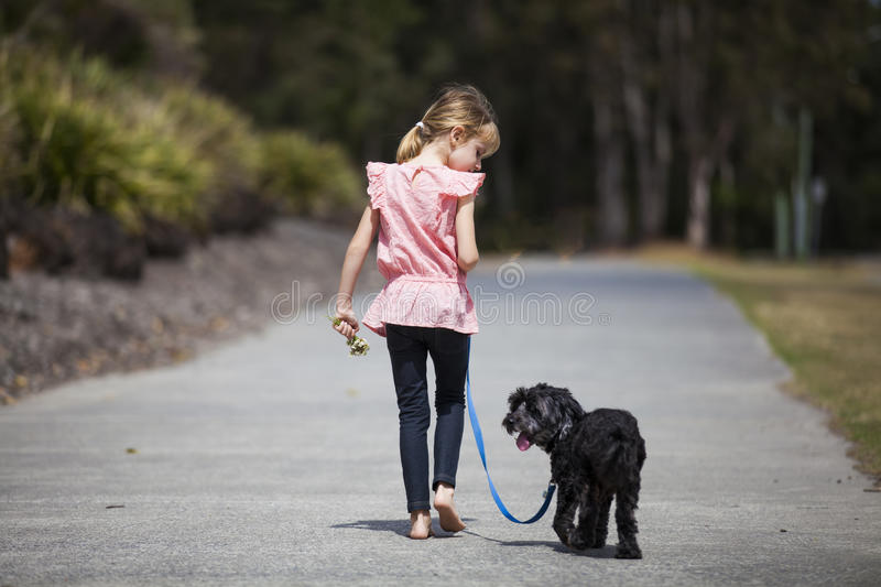 Girl Walking Her Dog. Young girl walking her dog on a leash stock images