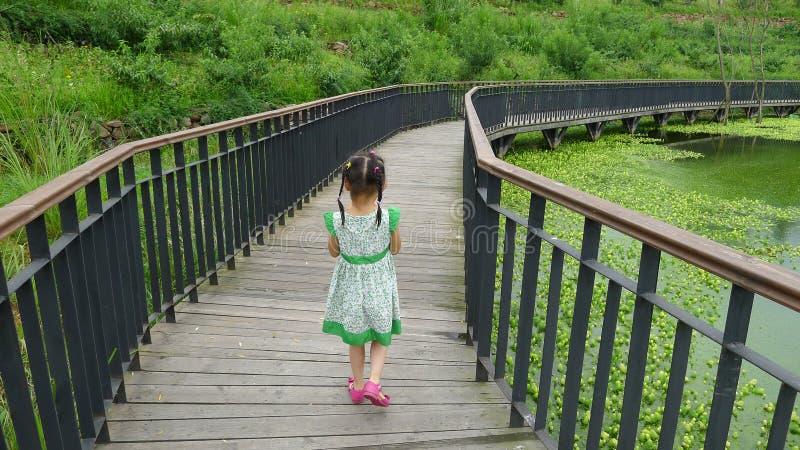 Girl walking on the wooden footbridge stock photography