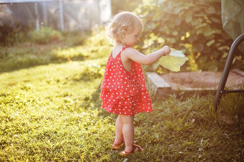 The girl walks in the yard royalty free stock image