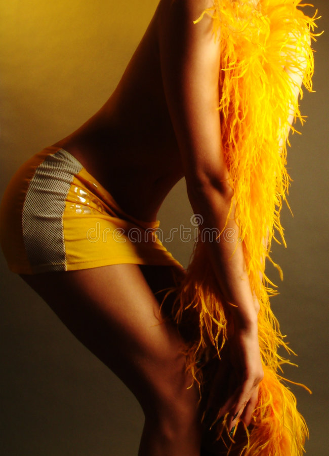 Download The girl in warm tones-2 stock photo. Image of parts, figure - 2323674