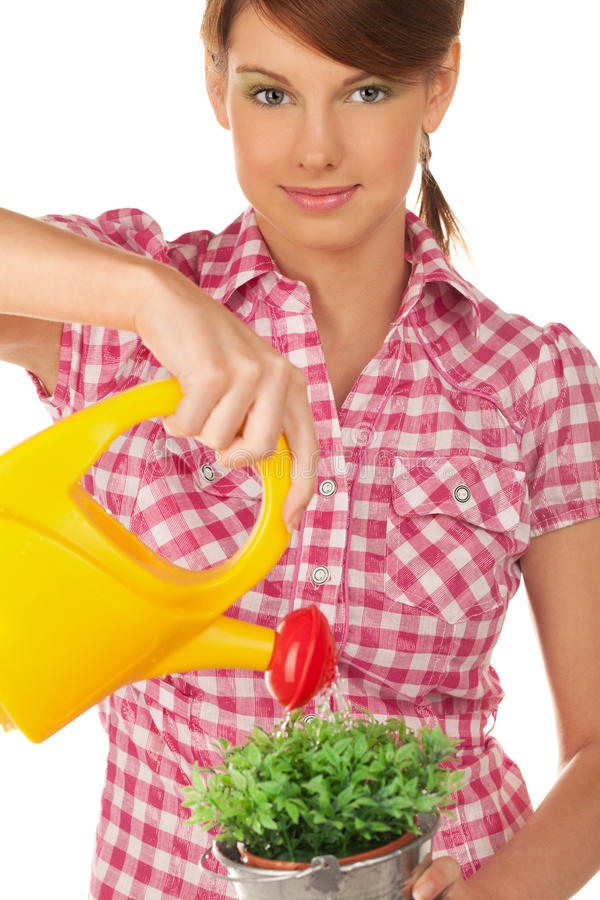 Girl with watering can. On isolated white royalty free stock photos