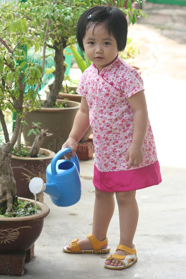 Girl watering plant royalty free stock images