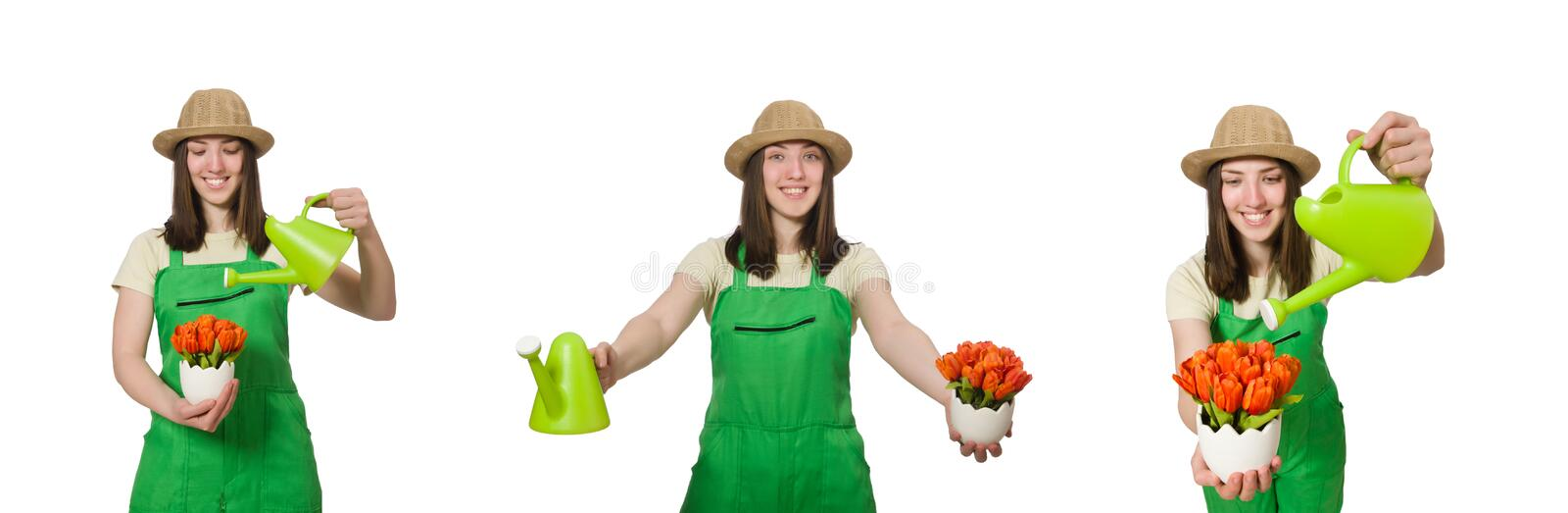 The girl watering plants on white stock images
