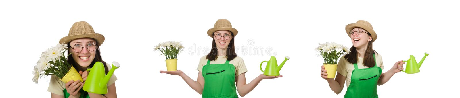 The girl watering plants on white stock photos