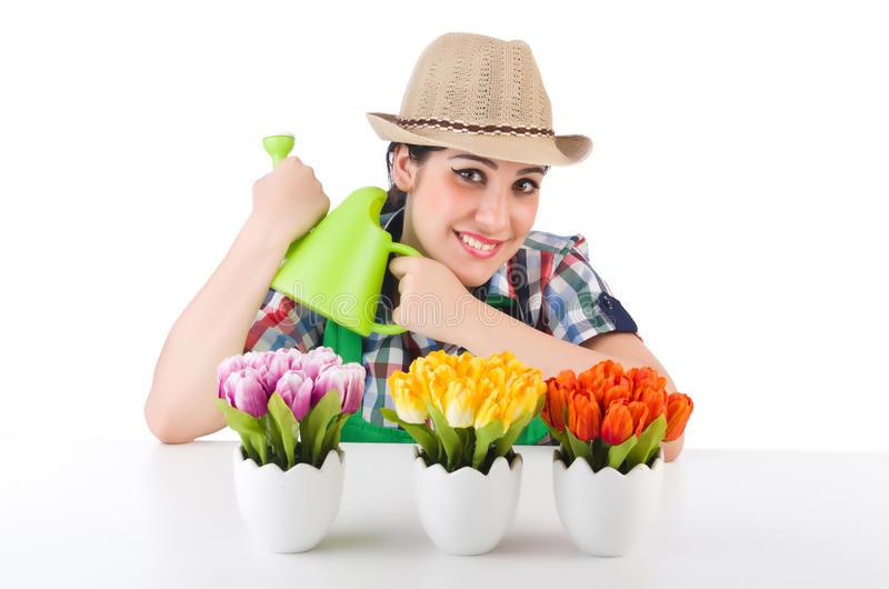 Girl watering plants stock photos