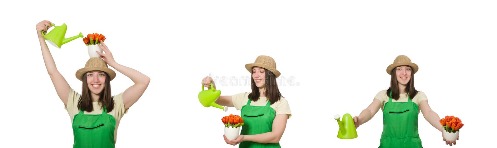 The girl watering plants on white stock photo