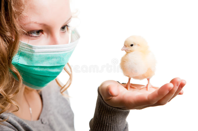 Download Girl Wearing Mask With Chicken Stock Image - Image: 18138877