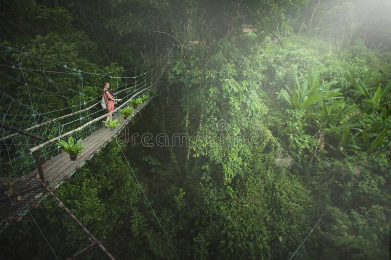 Girl Wearing Pink Dress Standing on Bridge Above Trees stock photography