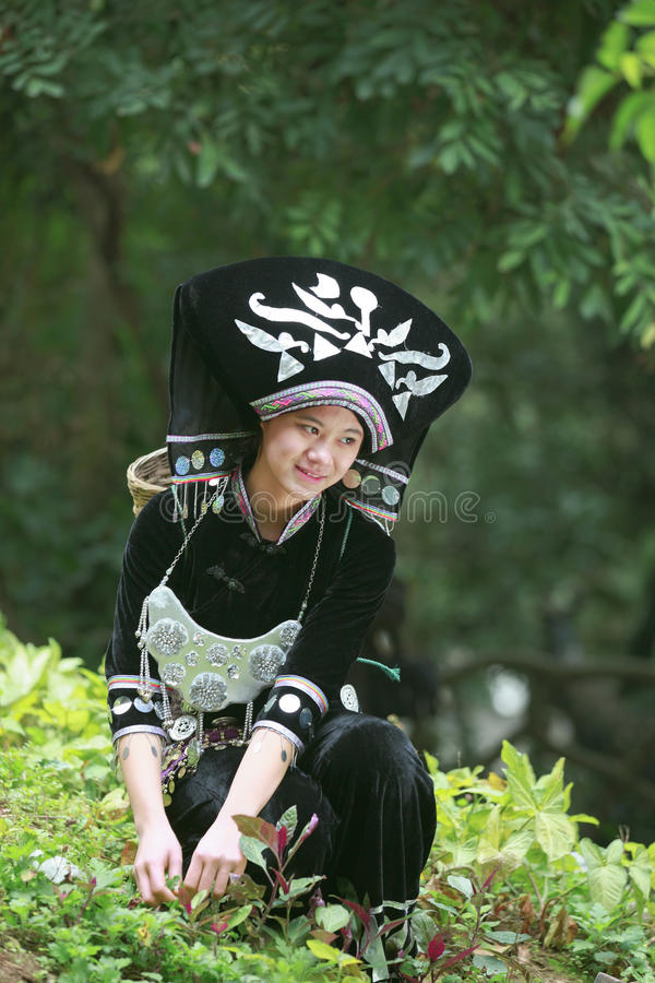 The girl wearing Zhuang clothing collected herbs stock photos
