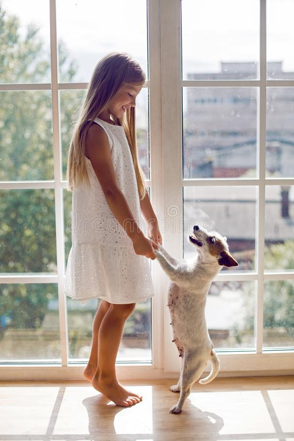 Girl in a white dress with dog royalty free stock photography