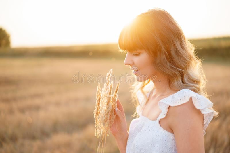 Girl in white dress with spikelets. Woman in field, place for text. Spike and girl in field. Late summer and early stock photography