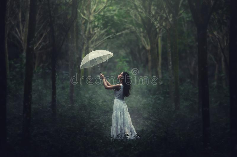 Girl in white dress with umbrella. Woman standing in the forest. stock images