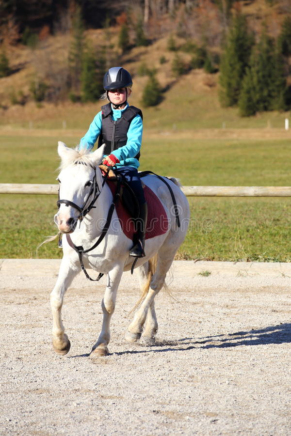 Girl with white horse. On a paddock stock photo