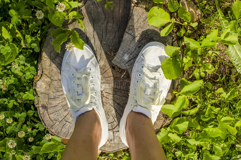 Girl in the white shoes is worth at the old stump in a green grass stock image