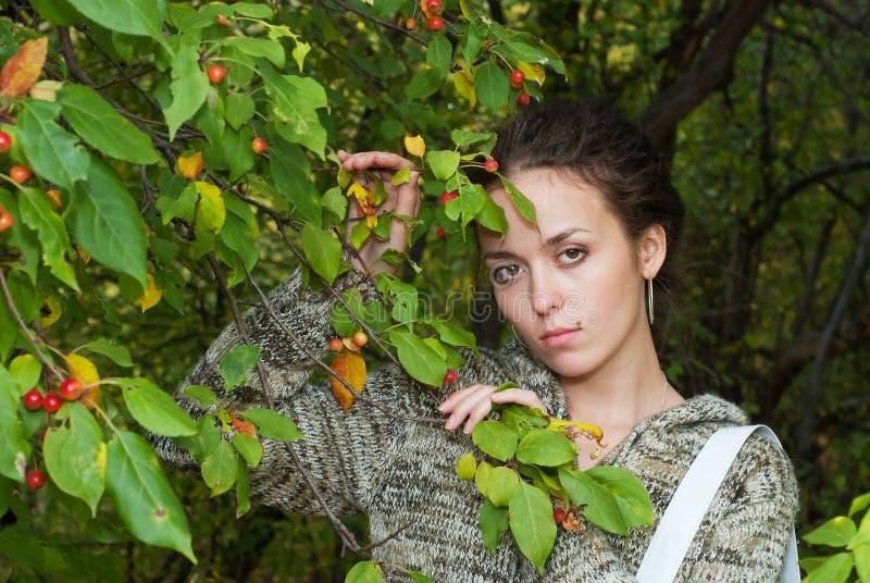 Girl And Wild Apple Tree Royalty Free Stock Photo
