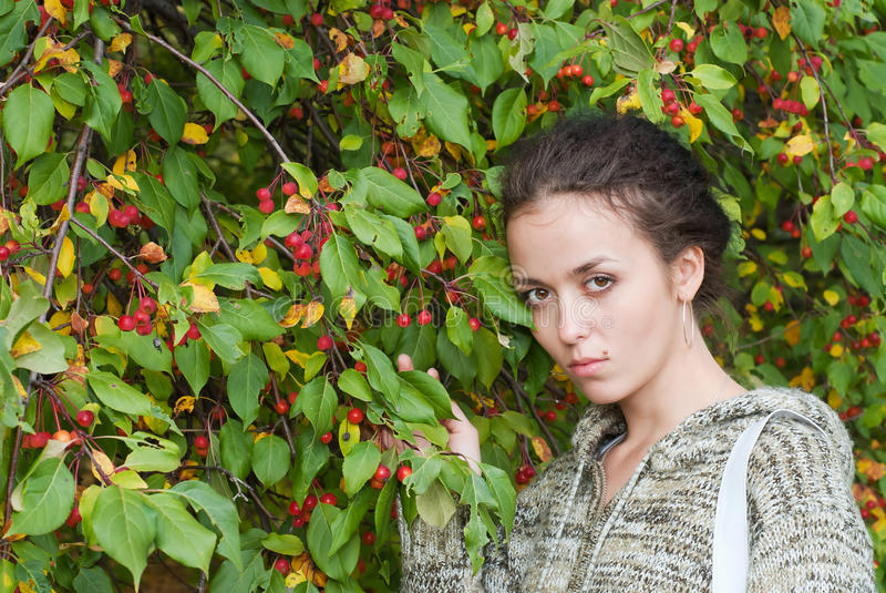Download Girl and wild apple tree stock image. Image of branches - 15777851