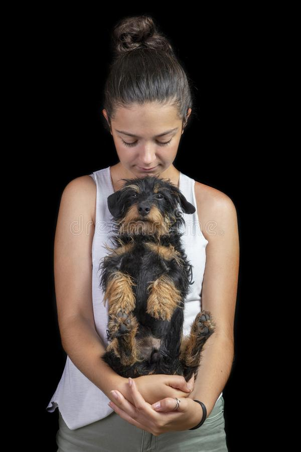 Girl and wire-haired dachshund on a black background stock images