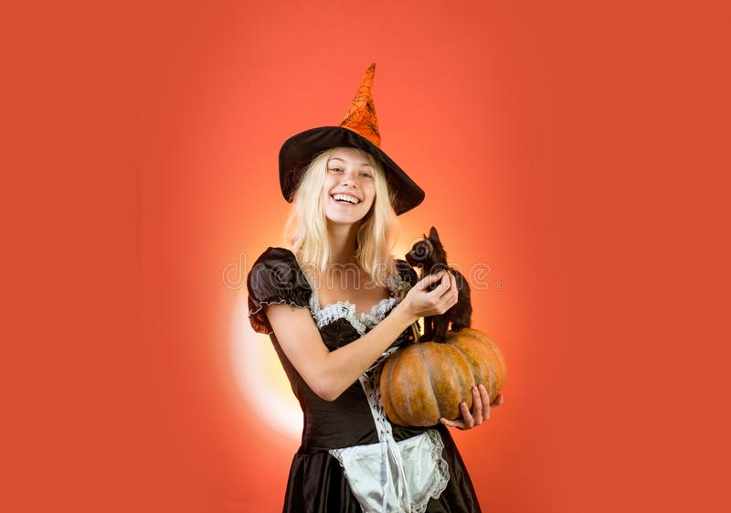 Girl witch plays with black kitten Halloween Witch in black hat. Black cat sits on a pumkin. Girl witch plays with black. Kitten. Housekeeper stock images
