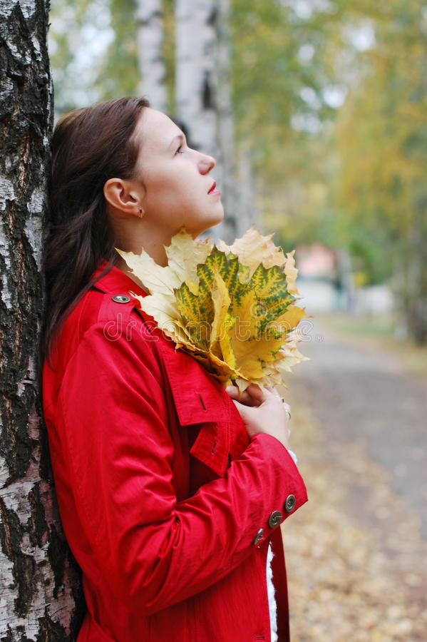 Free Girl With Autumn Leaves Stock Photos - 11793293
