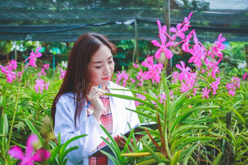 Asian women, plant researchers royalty free stock photography