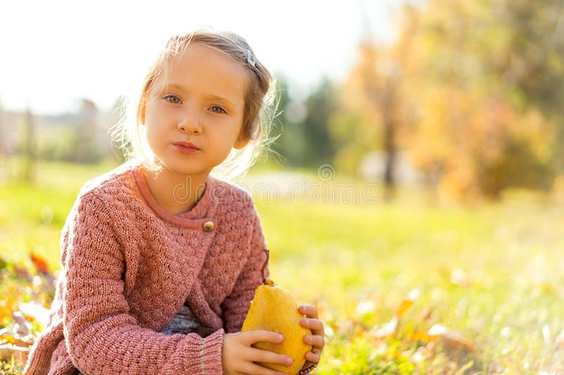 Girl 4 years old walks in autumn park holding a pear stock photo