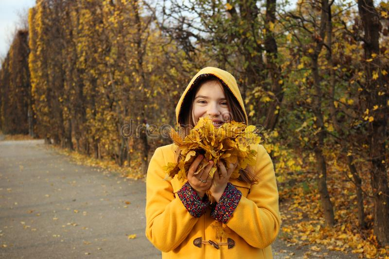 The girl in a yellow hooded coat holds the leaves in her hands stock photo