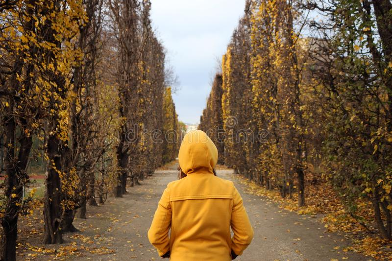 Girl in a yellow hooded coat in the park Augarten Vienna stock images