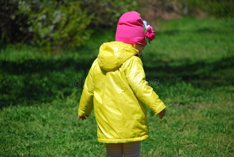 A girl in a yellow raincoat walking in the forest. royalty free stock images