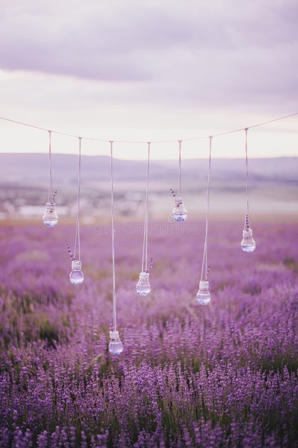 Girlande mit Vasen in Form von Glühlampen auf einem Lavendelgebiet lizenzfreies stockfoto