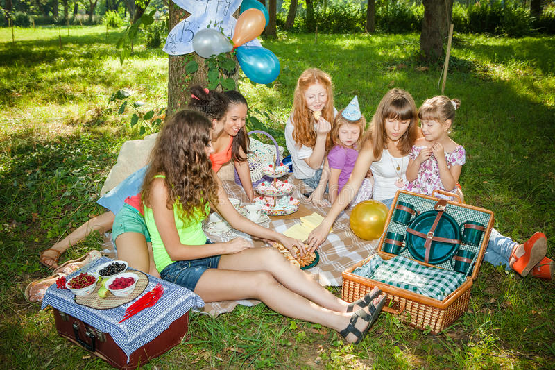Download Girlfriends on picnic stock image. Image of people, background - 25596741