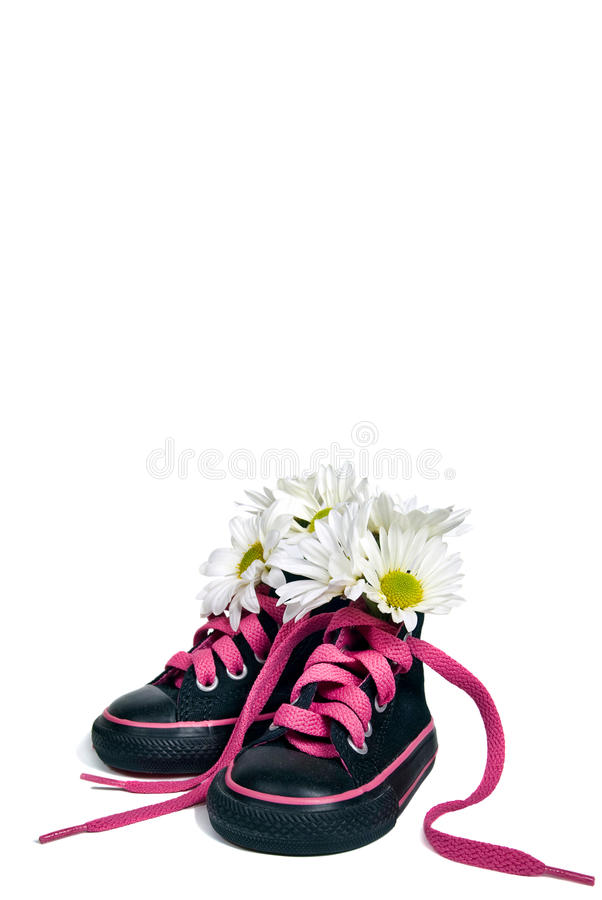 Download Girlie Sneakers stock photo. Image of bouquet, flower - 17690086
