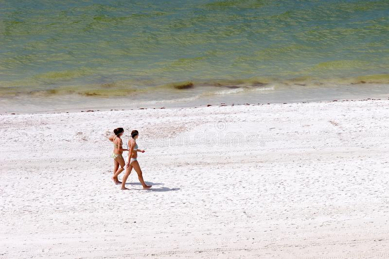 Download Girls on the Beach stock photo. Image of girls, vacation - 1452102