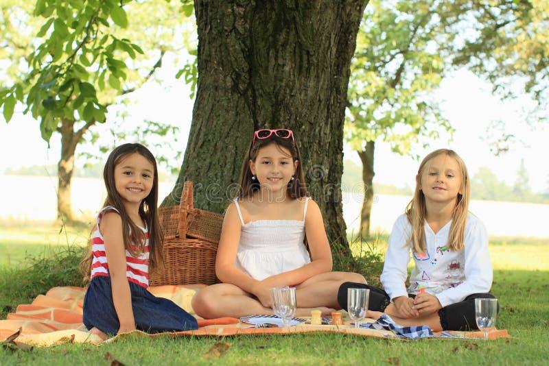 Download Girls On Blanket Having Picnic Stock Image - Image of blanket, sitting: 33269343