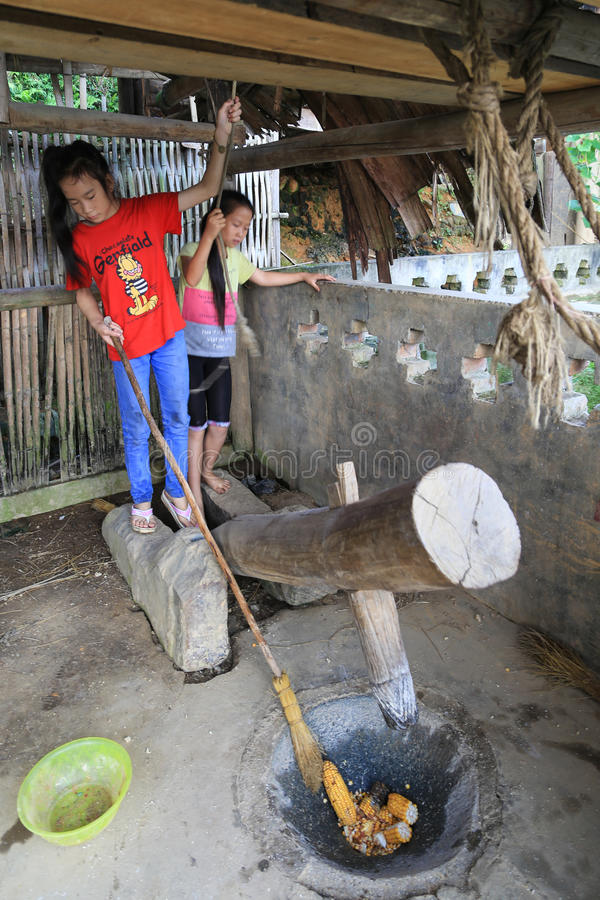 The girls breaking corn in ba sha miao village stock images