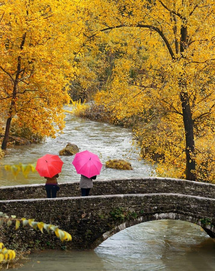 Girls, colorful umbrellas in autumn park. royalty free stock photos