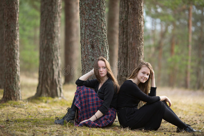 Girls girlfriends sitting together in a pine forest. Nature. stock image