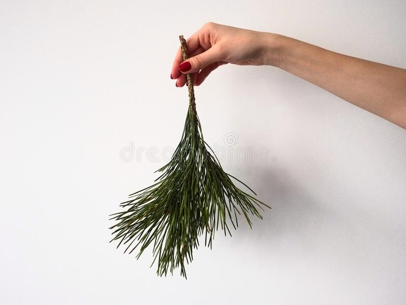 Girls hand holds down a branch of a pine tree with green needles isolated on a white background. Christmas and New Year holiday symbols stock photography