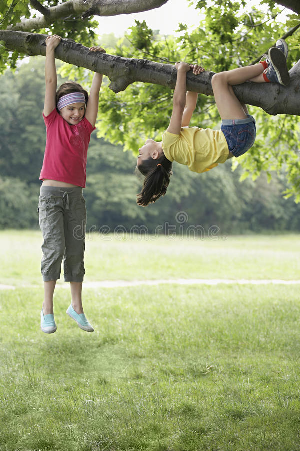 Girls Hanging On Tree Branch stock photography