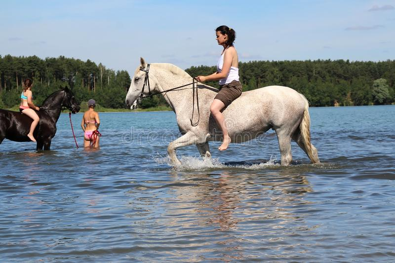 Girls on horseback swimming in the lake. Equestrian Sports Club brought horses to bathe in the lake. Russia. Moscow region. Schelkovsky district royalty free stock photo