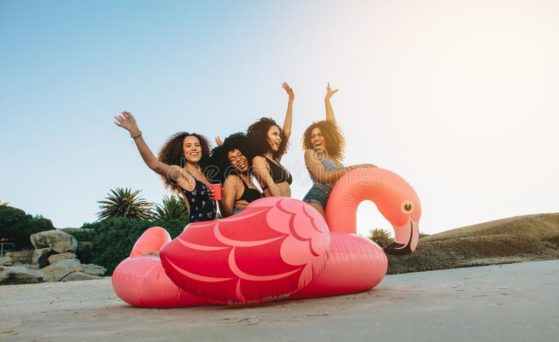 Girls on a inflatable swan at the beach stock photography
