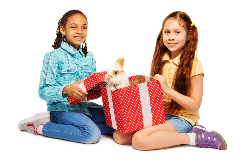 Girls open red present box with real bunny. Two girl Black and Caucasian open the present with real bunny happy and smiling, on white royalty free stock image