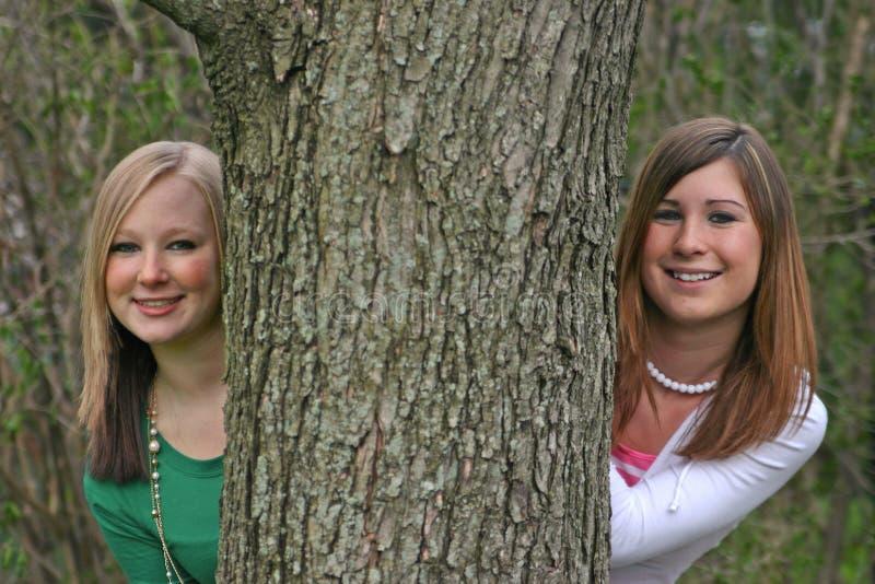 Download Girls Peeking Around A Tree Stock Photo - Image: 2331098