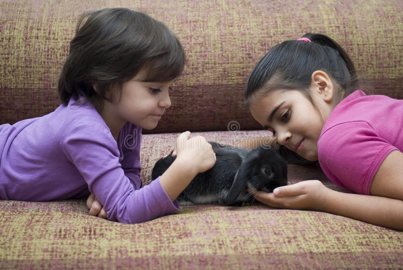 Girls playing with rabbit stock photos