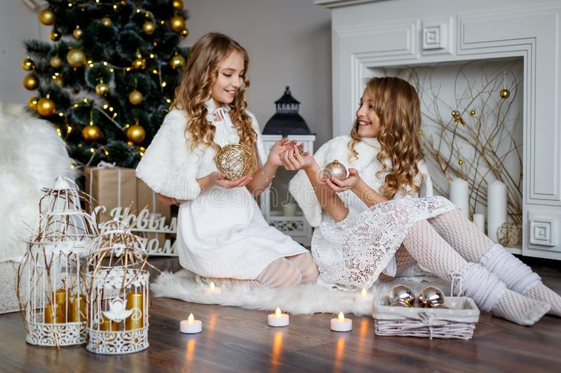 Girls twins in front of the fur-tree royalty free stock image