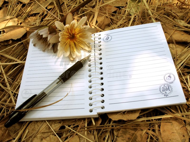 Girly notebook on foliage blanket. A blank open notebook resting on a blanket of dry leaves, with two flowers and a pen and some sunshine falling on the scene stock photo