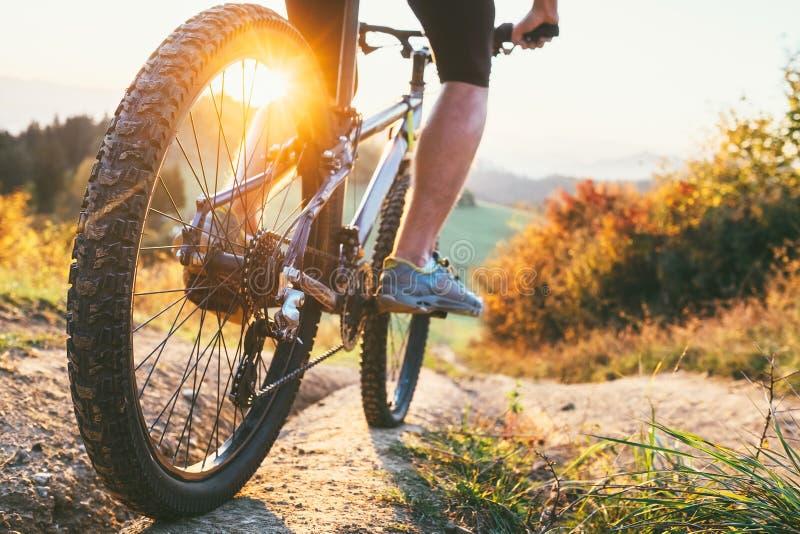 Giro del ciclista in mountain-bike giù dalla collina Fine sull'immagine della ruota attivo fotografia stock