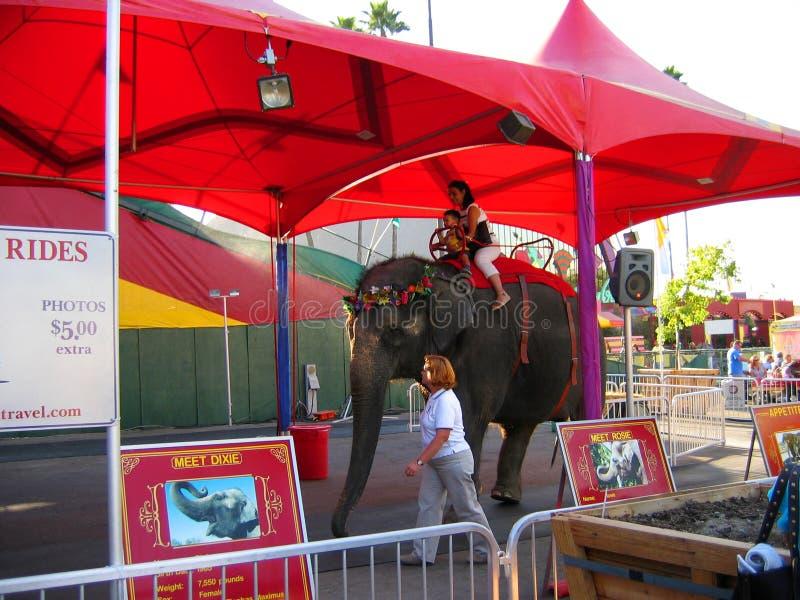 Giro dell'elefante, la contea di Los Angeles giusta, Fairplex, Pomona, California fotografia stock libera da diritti